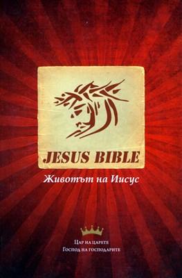 Новият завет: Животът на Иисус