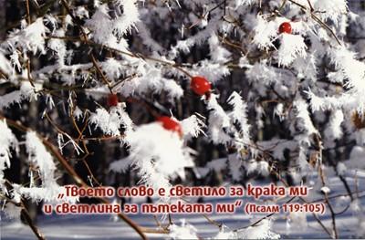 Еднолистна картичка със стих - Псалм 119:105 [Подаръци/Сувенири]