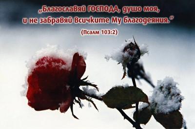 Еднолистна картичка със стих - Псалм 103:2 [Подаръци/Сувенири]