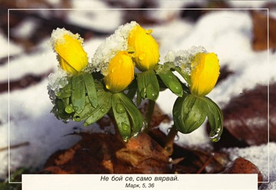 Еднолистна картичка със стих - Марк 5:36