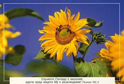 Еднолистна картичка със стих - Псалм 100:2 [Подаръци/Сувенири]