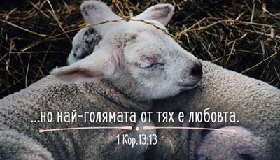 Мини картичка - 1 Коринтяни 13:13 [Подаръци/Сувенири]