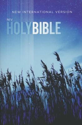 NIV Value Outreach Bible, Paperback