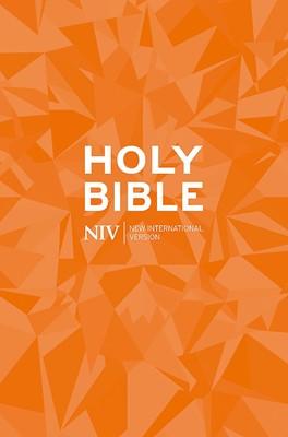 NIV Popular Bible (New International Version) Paperback