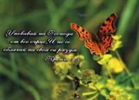 Магнит - Притчи 3:5