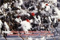 Еднолистна картичка със стих - Псалм 119:105