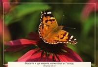 Еднолистна картичка със стих - Псалм 34:9