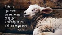 Мини картичка - Матей 11:28