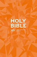NIV Popular Bible (New International Version) Paperback