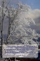 Еднолистна картичка със стих - Лука 2:14
