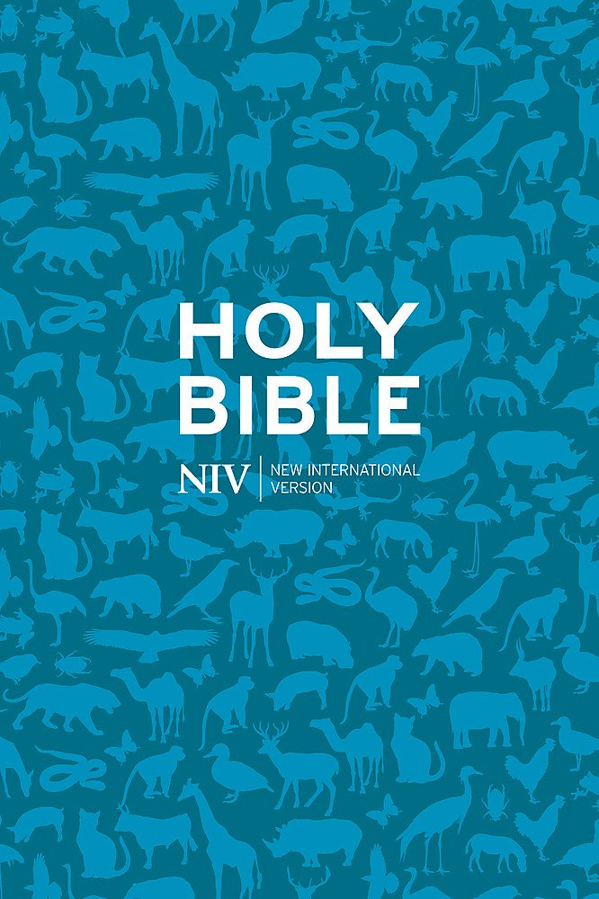 NIV Pocket Paperback Bible (New International Version)
