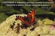 Еднолистна картичка със стих - Псалм 24:1