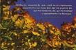 Еднолистна картичка със стих - Исая 41:10