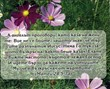 Мини картичка със стих - Матей 28:5-7а